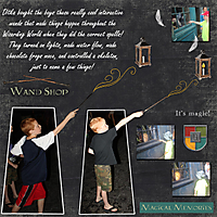 2015_Universal_Potter_Wandsweb.jpg