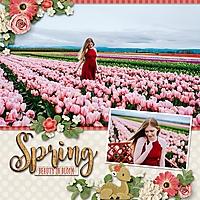 spring-beauty-in-bloom-0405msg.jpg