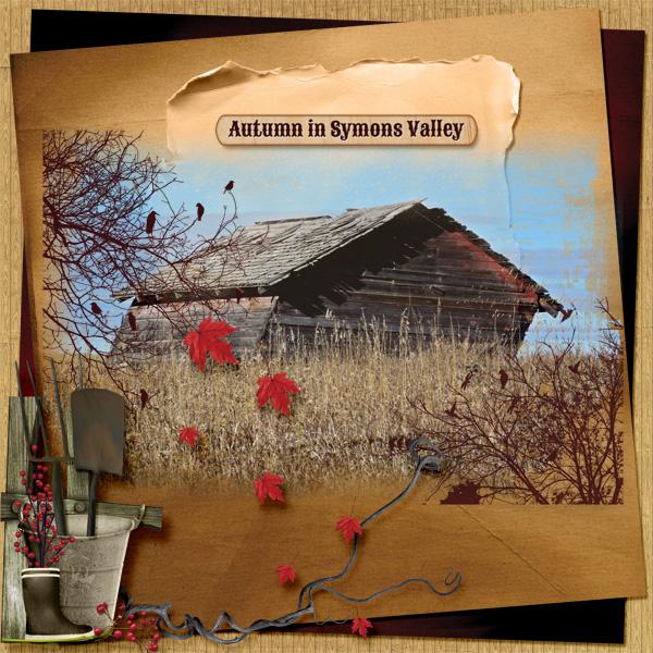 Autumn in Symons Valley