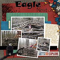 Brush_Eagle_Nest_600.jpg