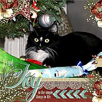 Kitty_Tree_2014_web.jpg
