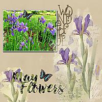 Spring_Flowers_copy.jpg