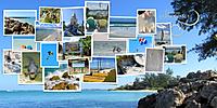 web_djp332_GS_brushchallenge_everythingelse_Yin_template-327_edited-1.jpg