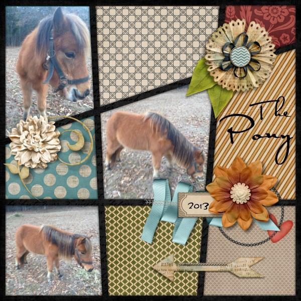The Pony-version2