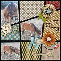 Ava_s_pony2_Custom_.jpg