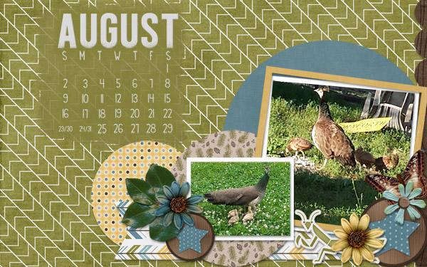 15 Aug cal