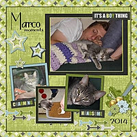 maqrco14.jpg