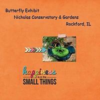 Butterfly-Exhibit.jpg