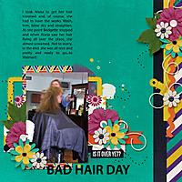 Bad-Hair-Day1.jpg