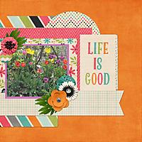 Life-is-Good-web.jpg