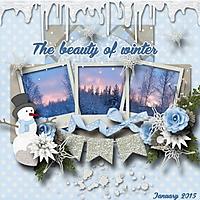 The_beauty_of_winter.jpg