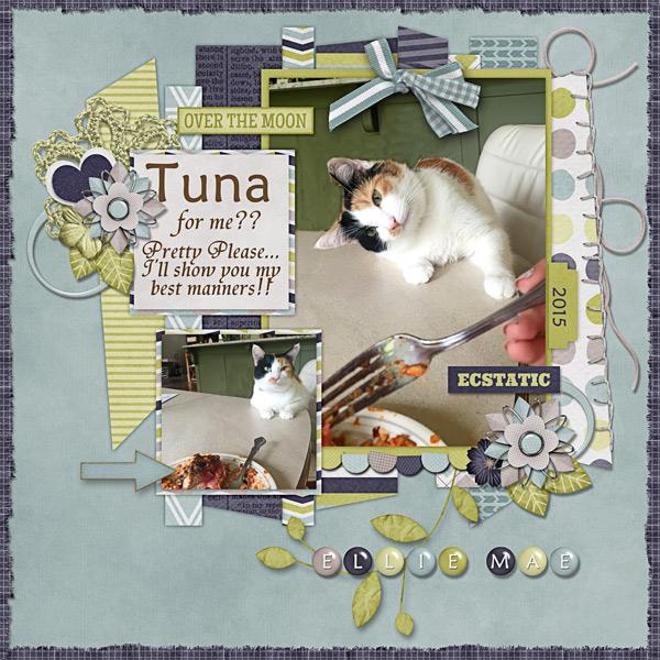 Tuna...For Me??