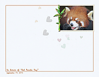 Red-Panda-Day.jpg