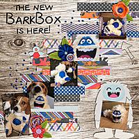 barkbox_copy.jpg