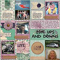 2015-Ups-_-Downs-4JBStudio.jpg