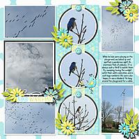 2012-04-22-04-DFD_CollectingMemories2-rt.jpg