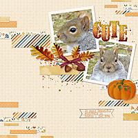 20141220_Squirrelweb.jpg