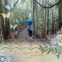 20180906_Rainforestweb.jpg