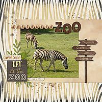 20180907_Zebrasweb.jpg