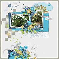 LJD-BeautifulFLowers-01.jpg