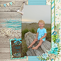 LindsayJaneDesigns_Coastal_Sept2017_copy.jpg