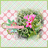 Pink_Flowers_Hummingbirds_Love.jpg