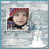 ljd_seasonalframes_frostywinter_robin_web.jpg