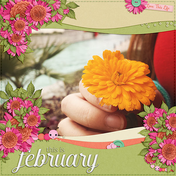 this is february
