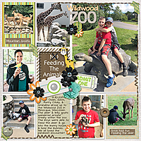 Wildwood-Zoo.jpg