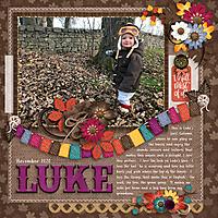 20201100-Luke-in-the-Leaves-20201119.jpg