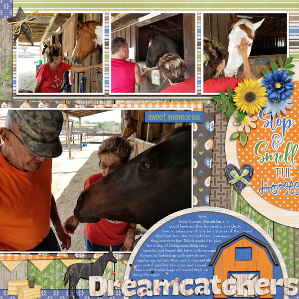 Dreamcatchers_horse_farm