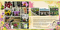 0904-hilo-orchids-DFD_InReview-1.jpg