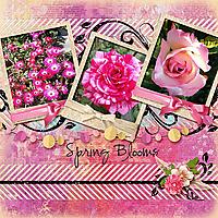 Spring-Blooms-in-Winter_webjmb.jpg