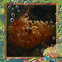 tcot-sea2-kldd-web.jpg