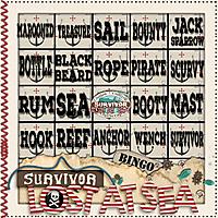 GS_Survivor_6_LostAtSea_BINGO_card8.jpg