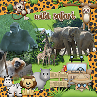 Wild-Safari-web.jpg