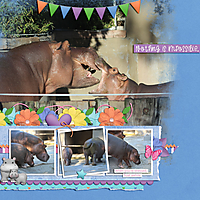 float-awhile-little-hippo.jpg