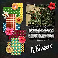 Hibiscus-Flowers.jpg