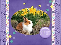 It_s_Spring_-_March_2016_Mini_Kit_Challenge.jpg