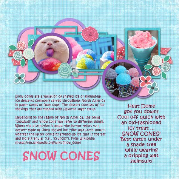 0716 Snow Cones