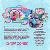 0716-Snow-Cones-4GSweb.jpg