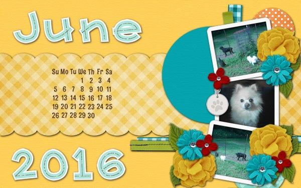 2016 May Desktop