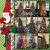 20161225_TreesOfMagnolias.jpg