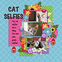 selfies-may15.jpg