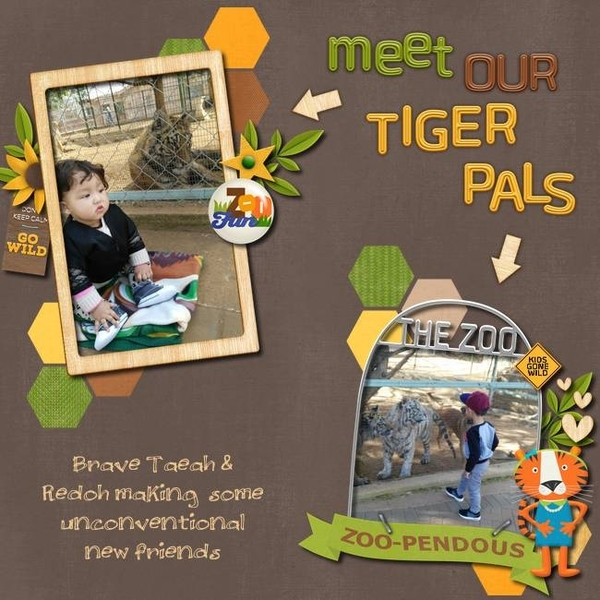 201609 Meet our Tiger pals