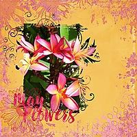 may-flowers_webv.jpg