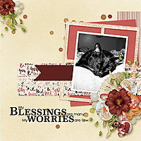 Blessings-are-Many.jpg