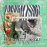 Beautiful-Wild-Thing-webv.jpg