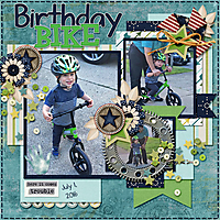 Birthday_Bike_GS.jpg
