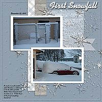 First_Snow_Fall_01-2016.jpg